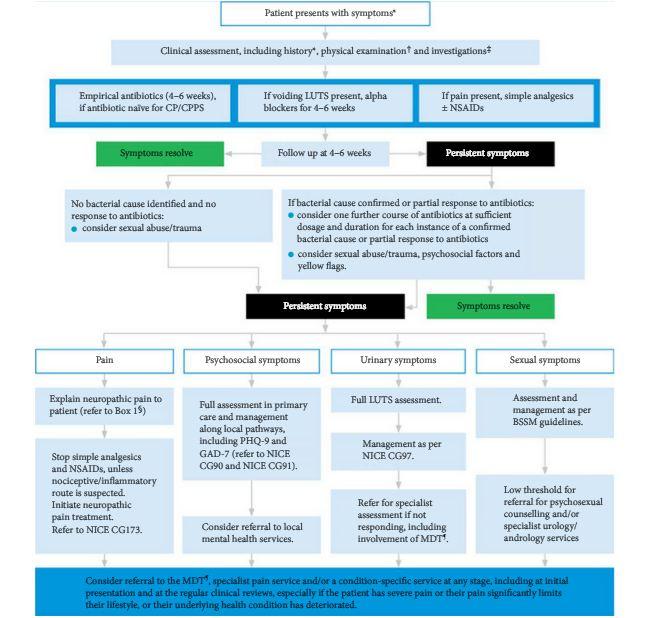 chronic prostatitis nice guidelines